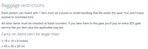 aa-basic-economy-baggage